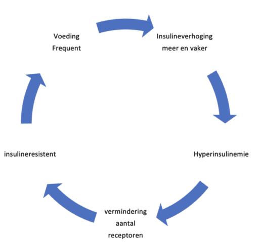 afvallen hormoonresistentie