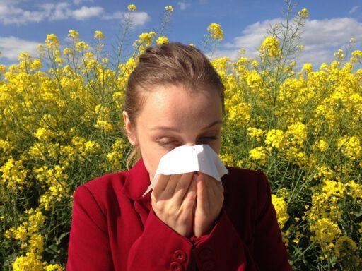 Allergie lekkende darm